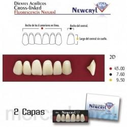 Dientes Newcryl-Vita 3P Lo A4