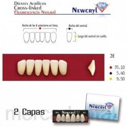 Dientes Newcryl-Vita 30M Lo C3