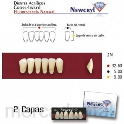 Dientes Newcryl-Vita A25 Up C3