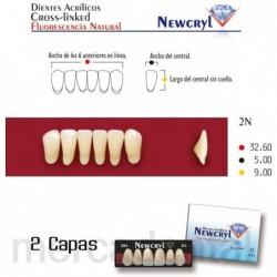Dientes Newcryl-Vita 30M Up C3