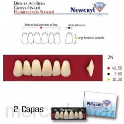 Dientes Newcryl-Vita 3D Lo A2