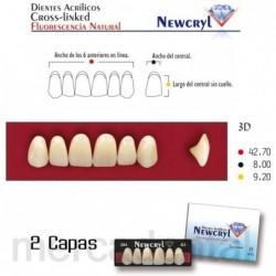 Dientes Newcryl-Vita 3N Up C3