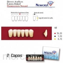 Dientes Newcryl-Vita 3M Lo A3