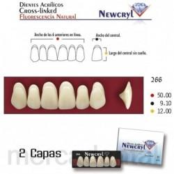 Dientes Newcryl-Vita 2D Lo C3