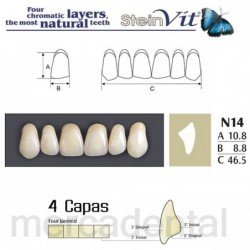 Dientes Newcryl-Vita 26 Lo C3