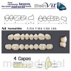 Dientes Newcryl-Vita 2E Lo A4