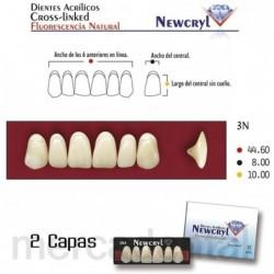 Dientes Newcryl-Vita 2D Up B3
